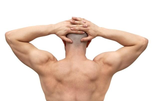 breve-anatomia-del-trapezio_bd008291a8e882230d1970719d8ce6b7